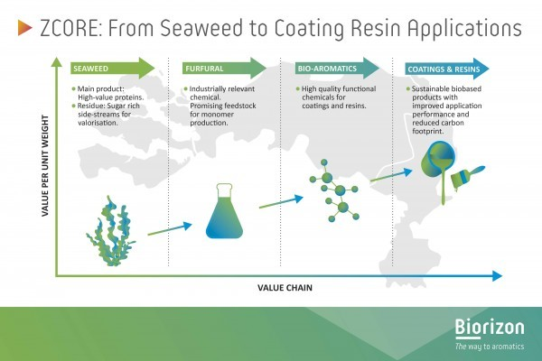 ZCORE Project Started: Seaweed Residues for Superior Bio-Coatings