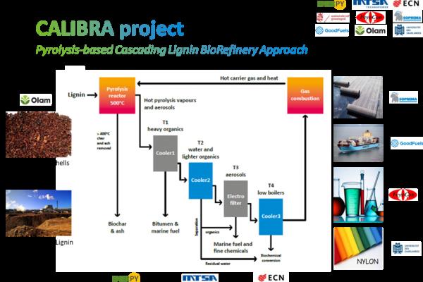 CALIBRA (CAscading LIgnin BioRefinery Approach)