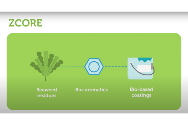 ZCORE project animation: Seaweed residues for superior bio-coatings